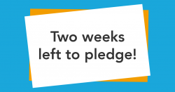 CrowdFunder Two Weeks Remaining